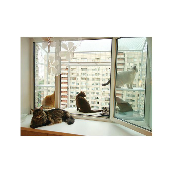 koshachij-balkonchik-vo-vse-okno